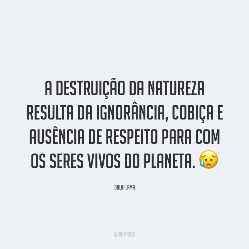 A destruição da natureza resulta da ignorância, cobiça e ausência de respeito para com os seres vivos do planeta. 😥