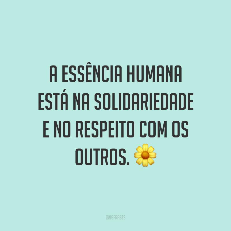 A essência humana está na solidariedade e no respeito com os outros. 🌼