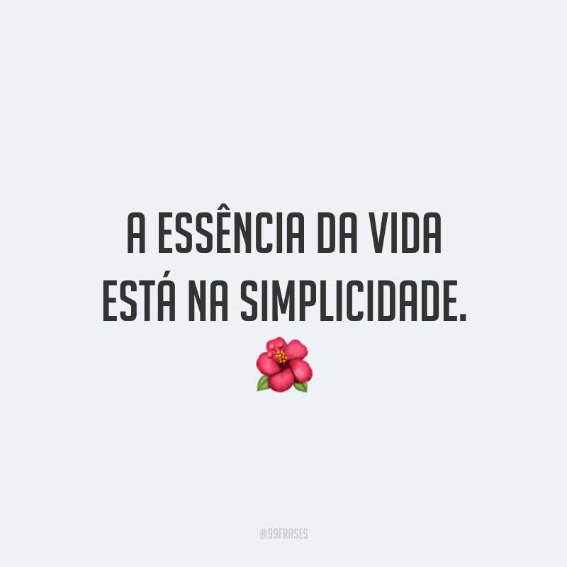 A essência da vida está na simplicidade. 🌺