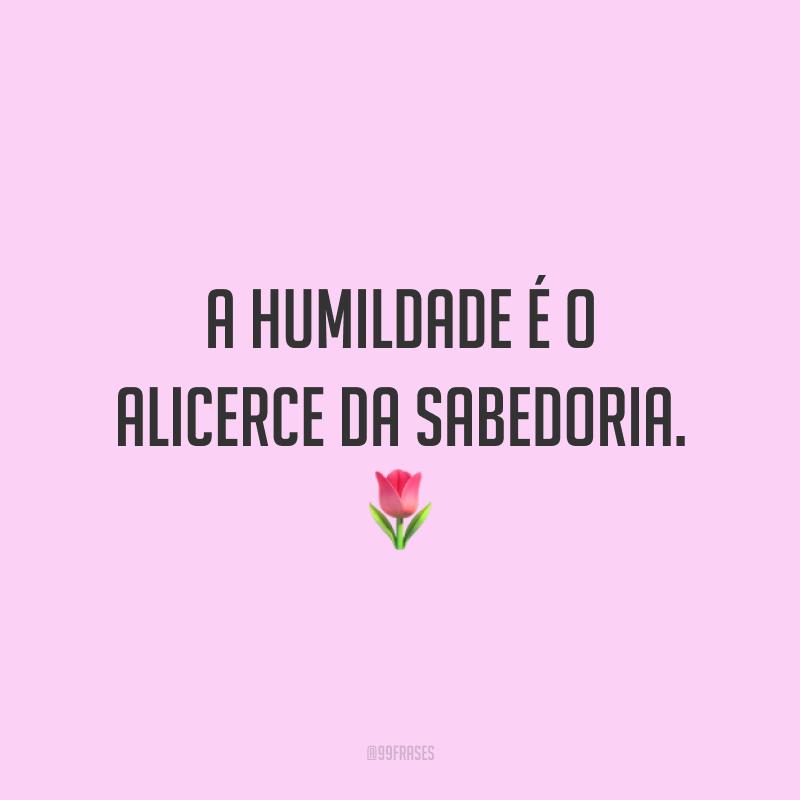 A humildade é o alicerce da sabedoria. 🌷