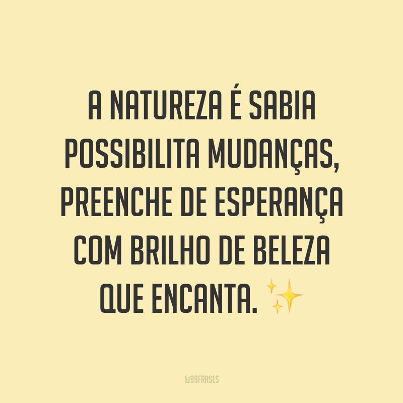 A natureza é sabia possibilita mudanças, preenche de esperança com brilho de beleza que encanta. ✨