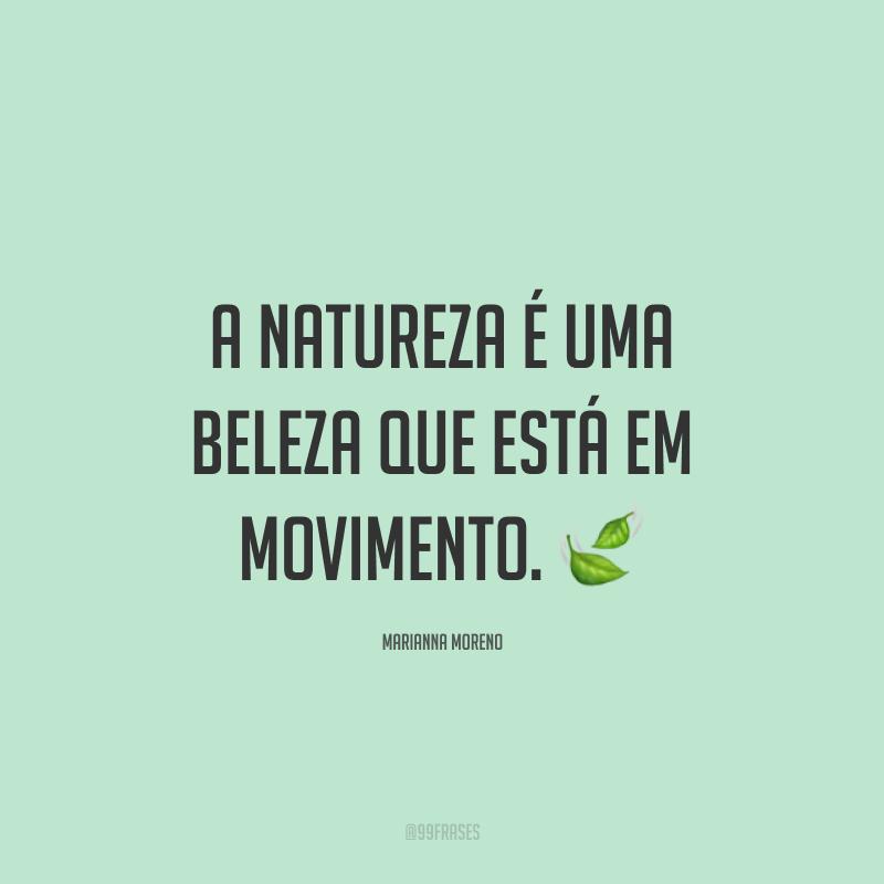 A natureza é uma beleza que está em movimento. ?