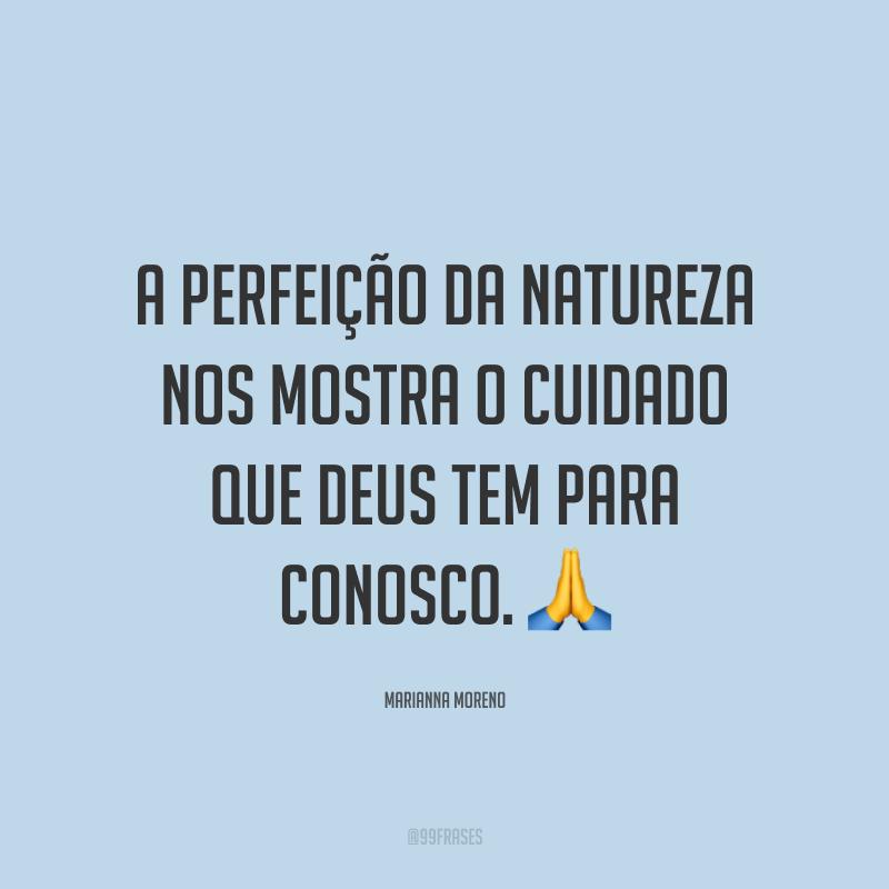 A perfeição da natureza nos mostra o cuidado que Deus tem para conosco. ?