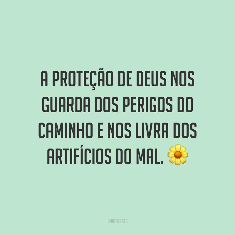 A proteção de Deus nos guarda dos perigos do caminho e nos livra dos artifícios do mal. 🌼