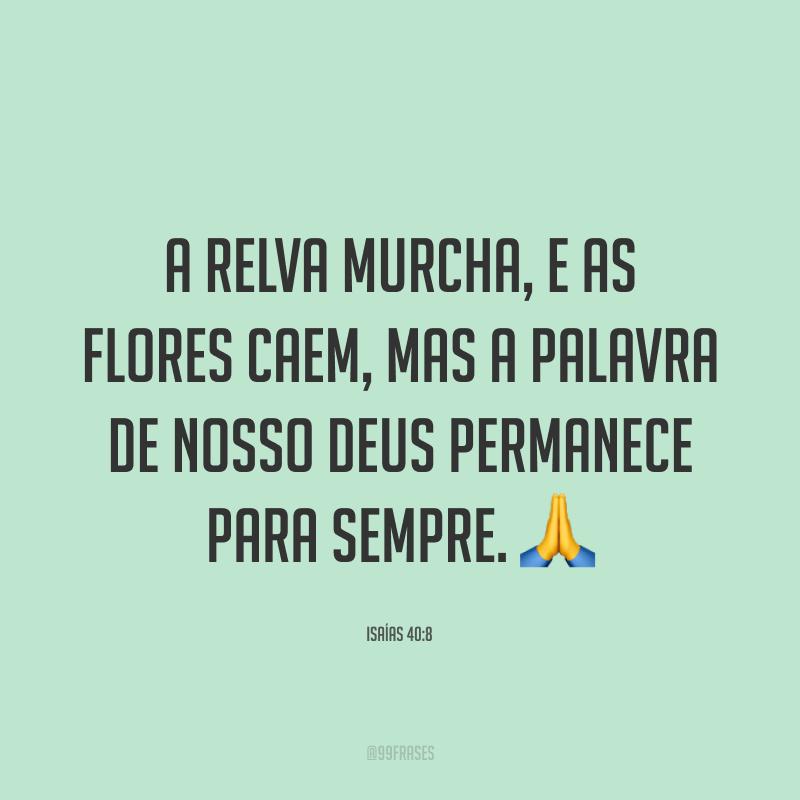 A relva murcha, e as flores caem, mas a palavra de nosso Deus permanece para sempre. 🙏