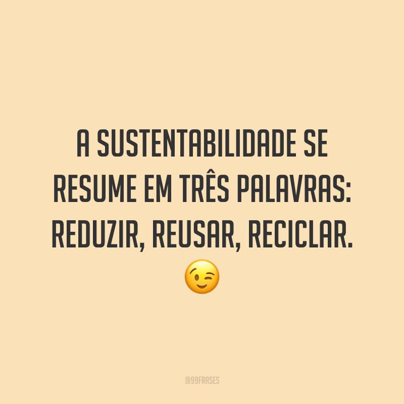 A sustentabilidade se resume em três palavras: reduzir, reusar, reciclar. 😉