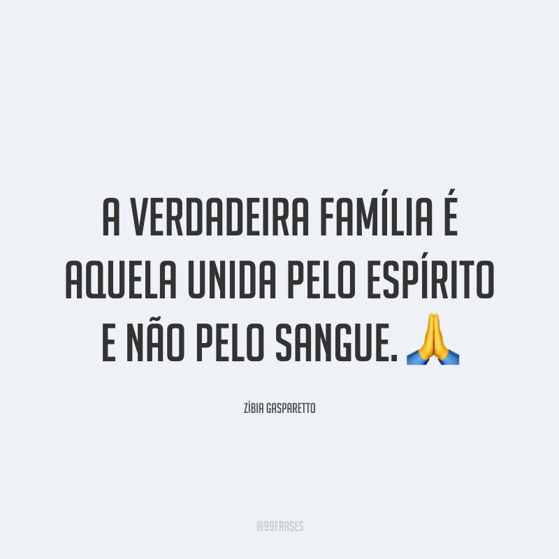 A verdadeira família é aquela unida pelo espírito e não pelo sangue. 🙏