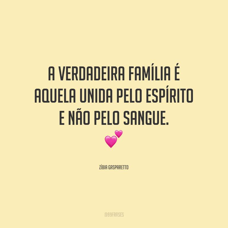 A verdadeira família é aquela unida pelo espírito e não pelo sangue.