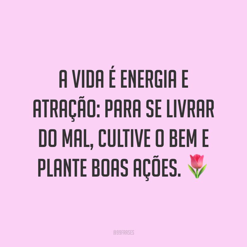 A vida é energia e atração: para se livrar do mal, cultive o bem e plante boas ações. 🌷
