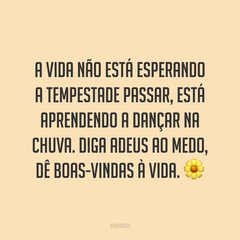 A vida não está esperando a tempestade passar, está aprendendo a dançar na chuva. Diga adeus ao medo, dê boas-vindas à vida. 🌼