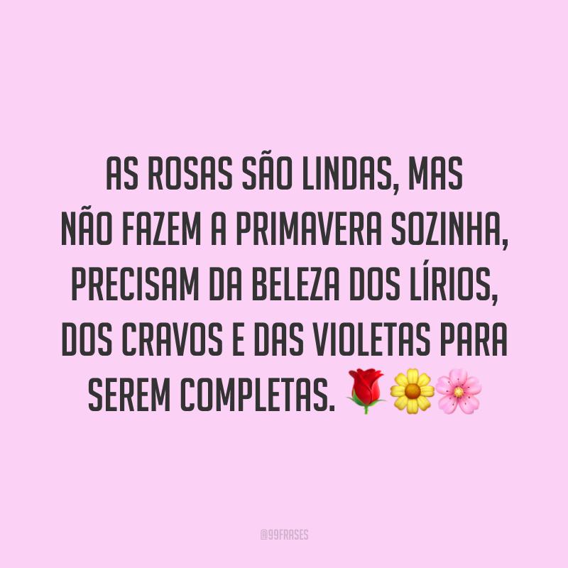 As rosas são lindas, mas não fazem a primavera sozinha, precisam da beleza dos lírios, dos cravos e das violetas para serem completas. 🌹🌼🌸