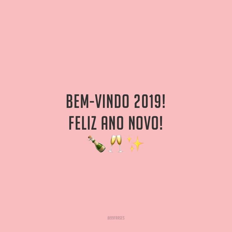 Bem-vindo 2019! Feliz Ano Novo!