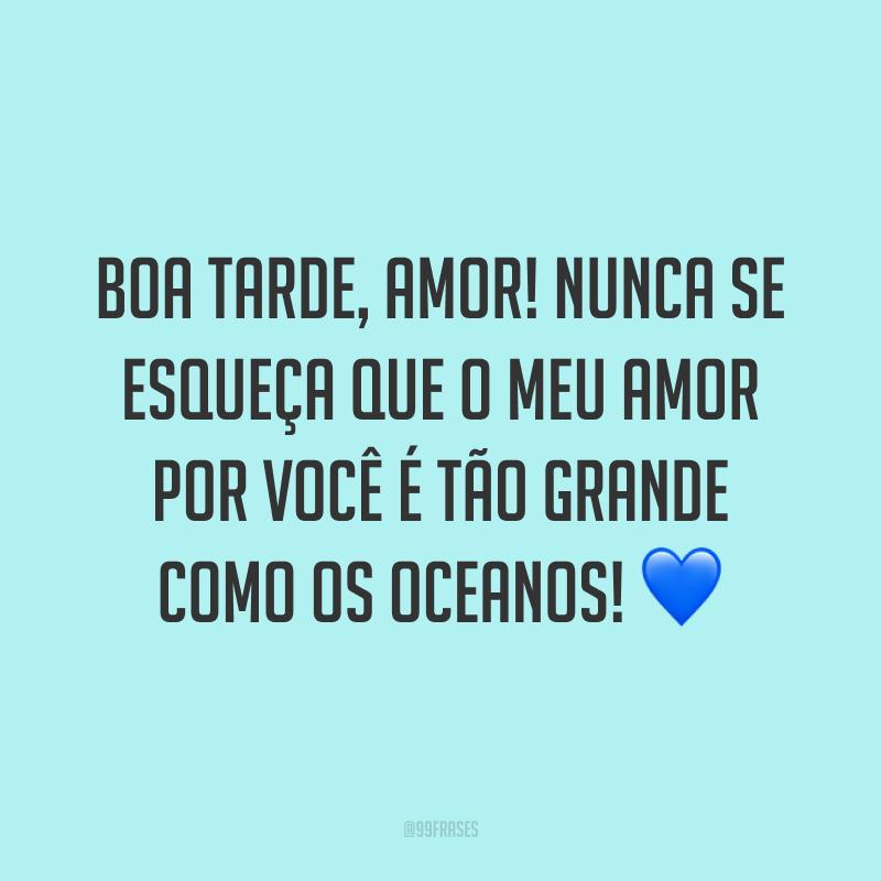 Boa tarde, amor! Nunca se esqueça que o meu amor por você é tão grande como os oceanos! 💙