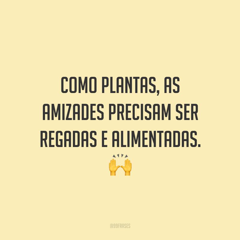 Como plantas, as amizades precisam ser regadas e alimentadas. 🙌