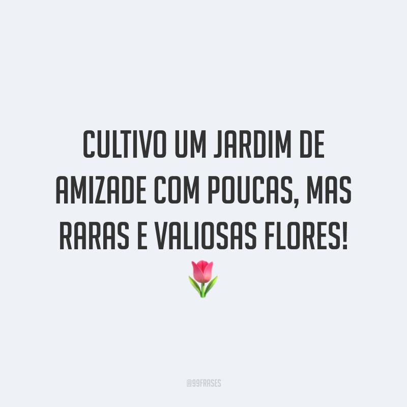 Cultivo um jardim de amizade com poucas, mas raras e valiosas flores! 🌷