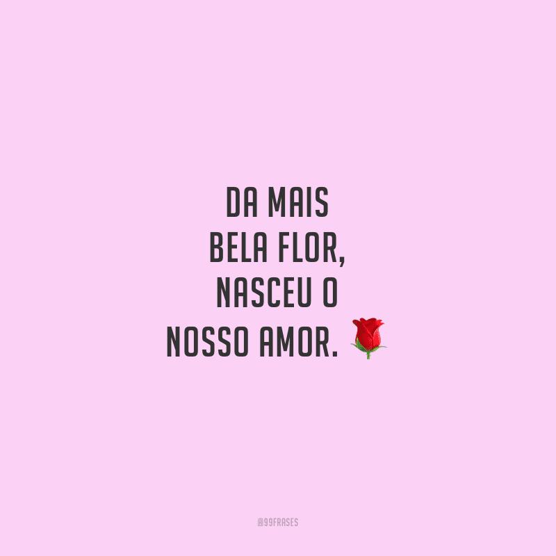 Da mais bela flor, nasceu o nosso amor.