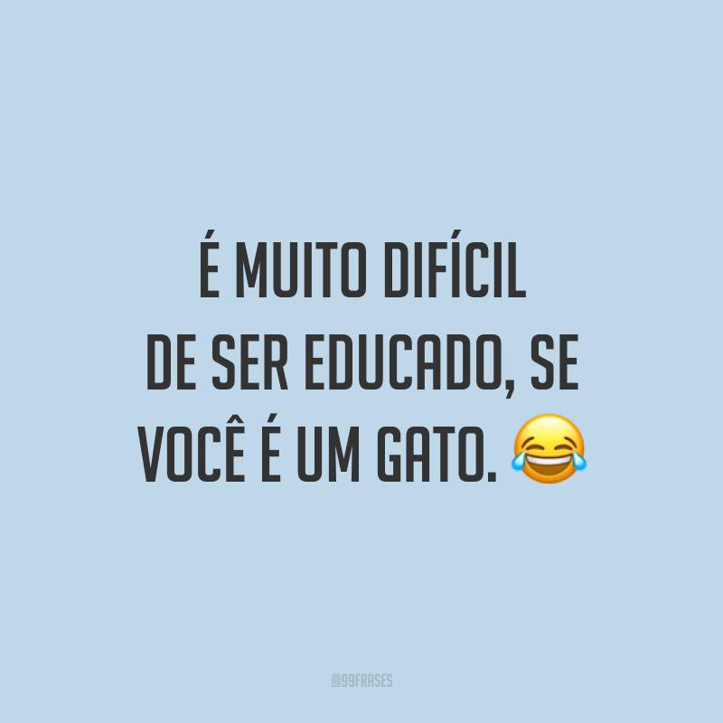 É muito difícil de ser educado, se você é um gato. 😂