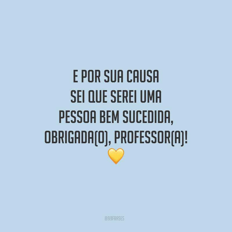 E por sua causa sei que serei uma pessoa bem sucedida, obrigada(o), professor(a)!