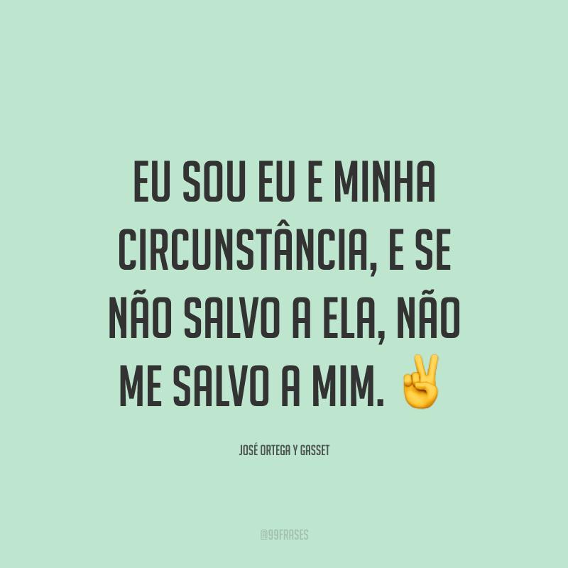 Eu sou eu e minha circunstância, e se não salvo a ela, não me salvo a mim. ✌