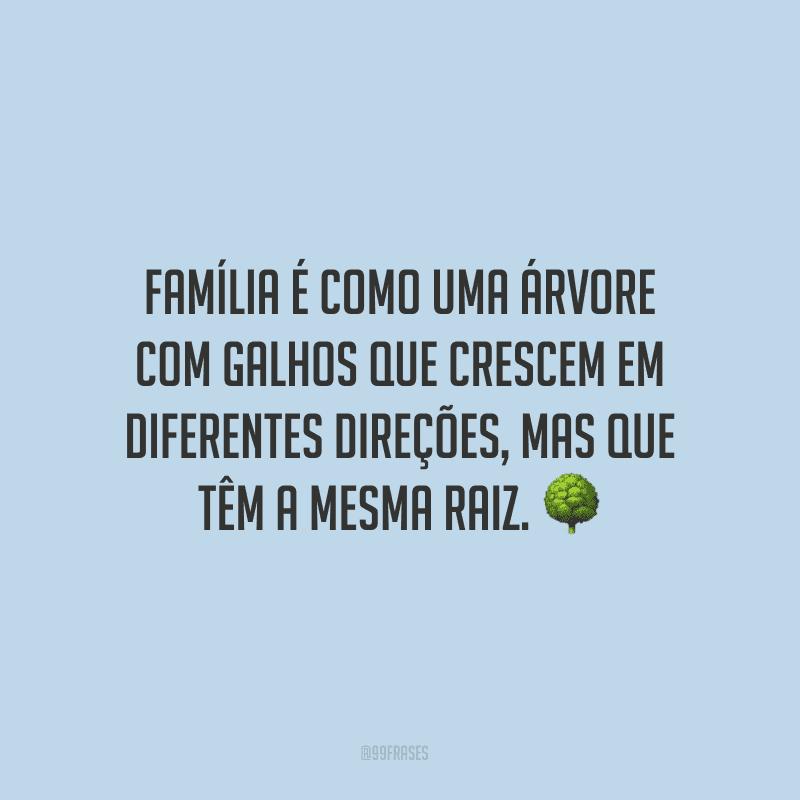Família é como uma árvore com galhos que crescem em diferentes direções, mas que têm a mesma raiz.