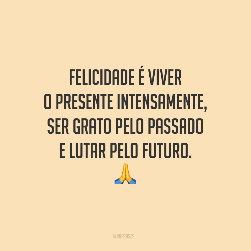 Felicidade é viver o presente intensamente, ser grato pelo passado e lutar pelo futuro.<br />