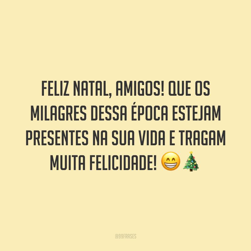 Feliz Natal, amigos! Que os milagres dessa época estejam presentes na sua vida e tragam muita felicidade!