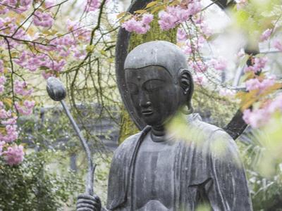 40 frases budistas para encontrar consigo mesmo e despertar para a vida
