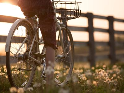 50 frases de ciclistas para os apaixonados por pedalar com liberdade