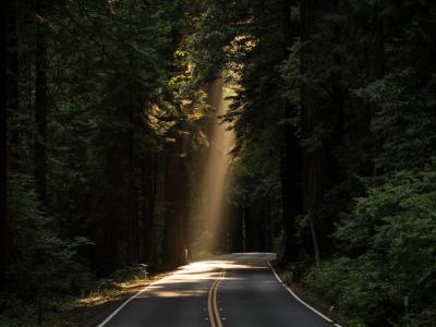 65 frases de luz para guiar sua vida com positividade e proteção