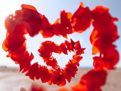 40 frases de motivação no amor para acreditar na sua força e poder