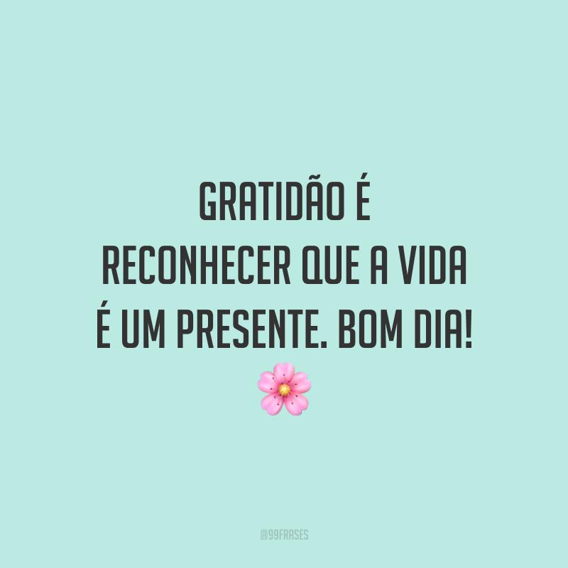 Gratidão é reconhecer que a vida é um presente. Bom dia! 🌸