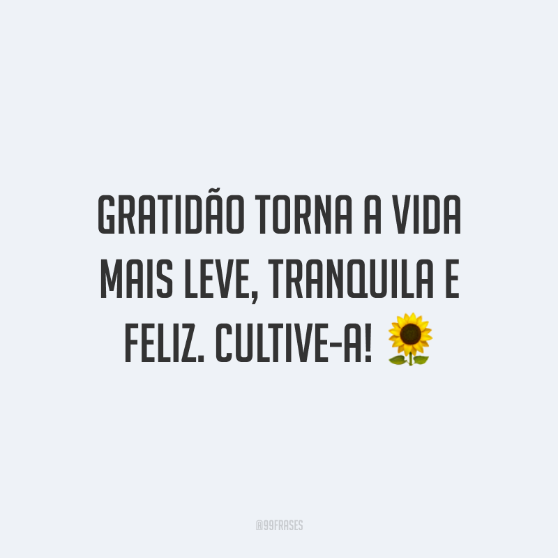 Gratidão torna a vida mais leve, tranquila e feliz. Cultive-a!