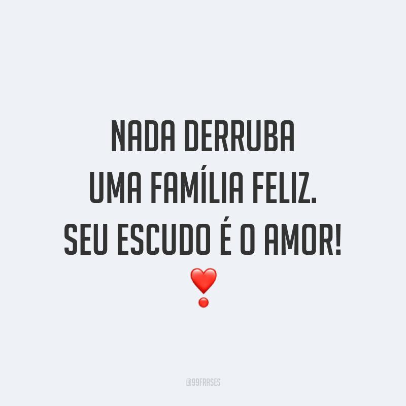 Nada derruba uma família feliz. Seu escudo é o amor! ❣️