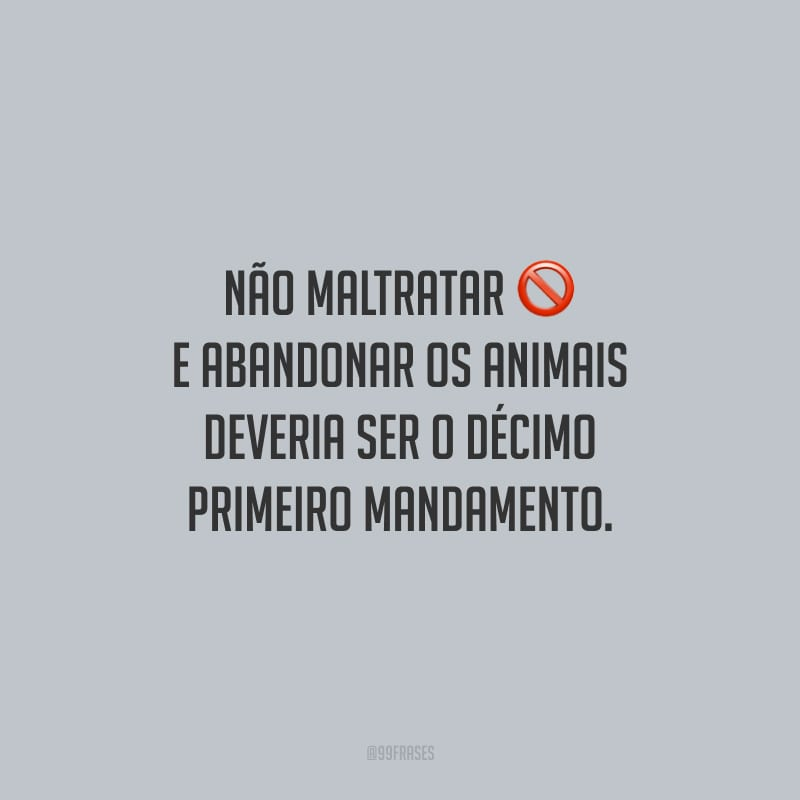Não maltratar e abandonar os animais deveria ser o décimo primeiro mandamento.