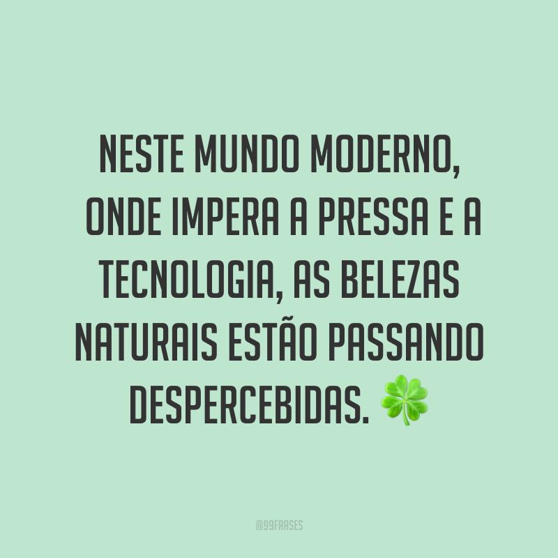 Neste mundo moderno, onde impera a pressa e a tecnologia, as belezas naturais estão passando despercebidas. ?
