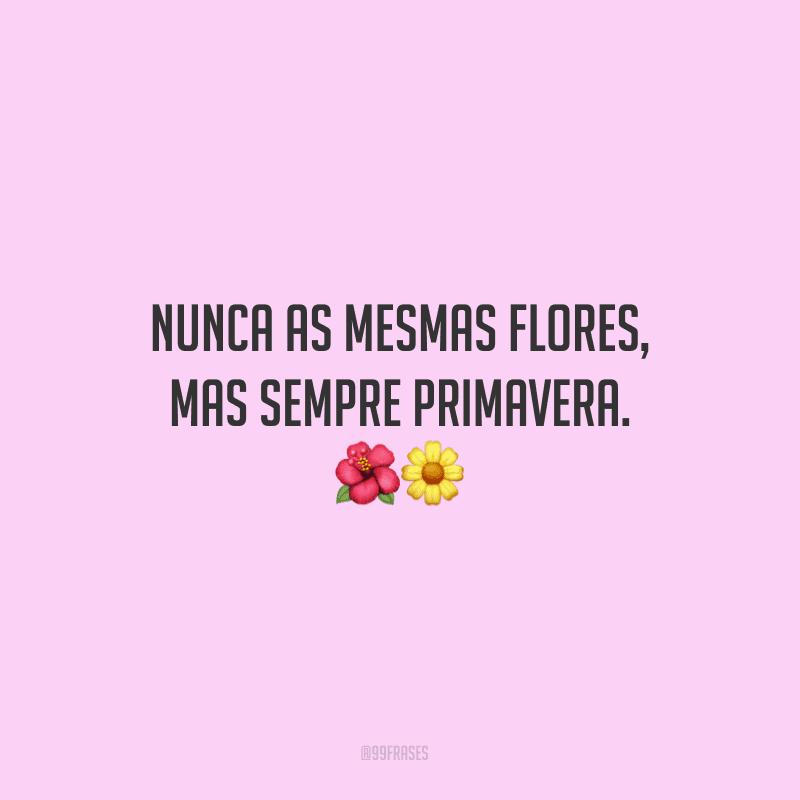 Nunca as mesmas flores, mas sempre primavera.