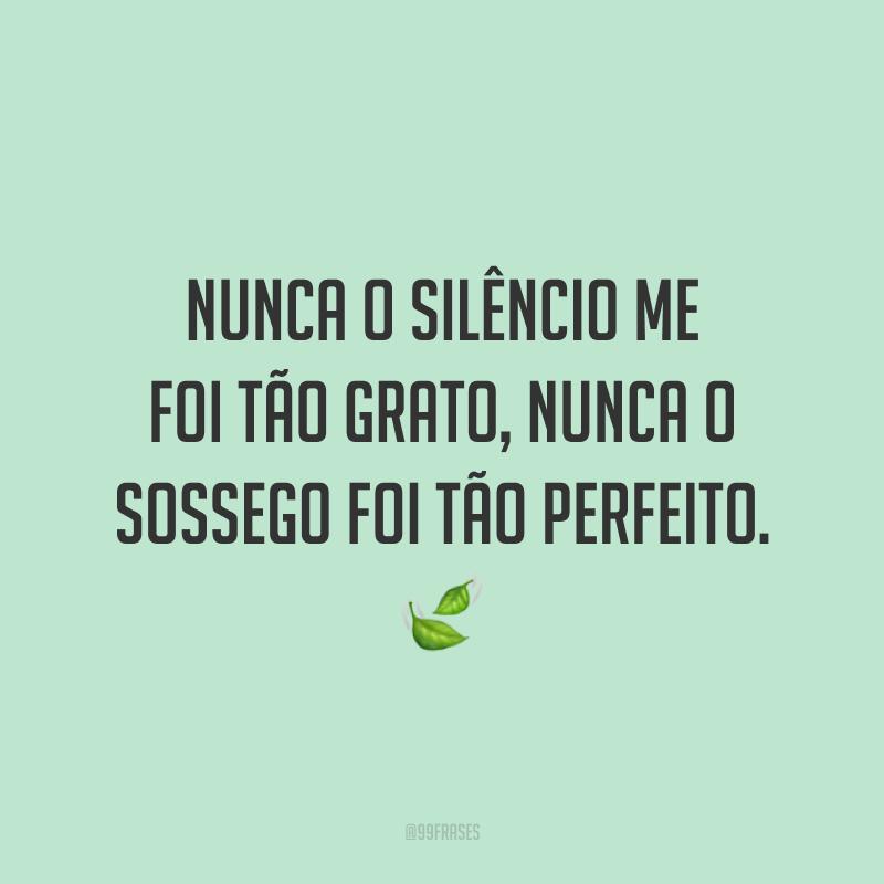 Nunca o silêncio me foi tão grato, nunca o sossego foi tão perfeito. 🍃