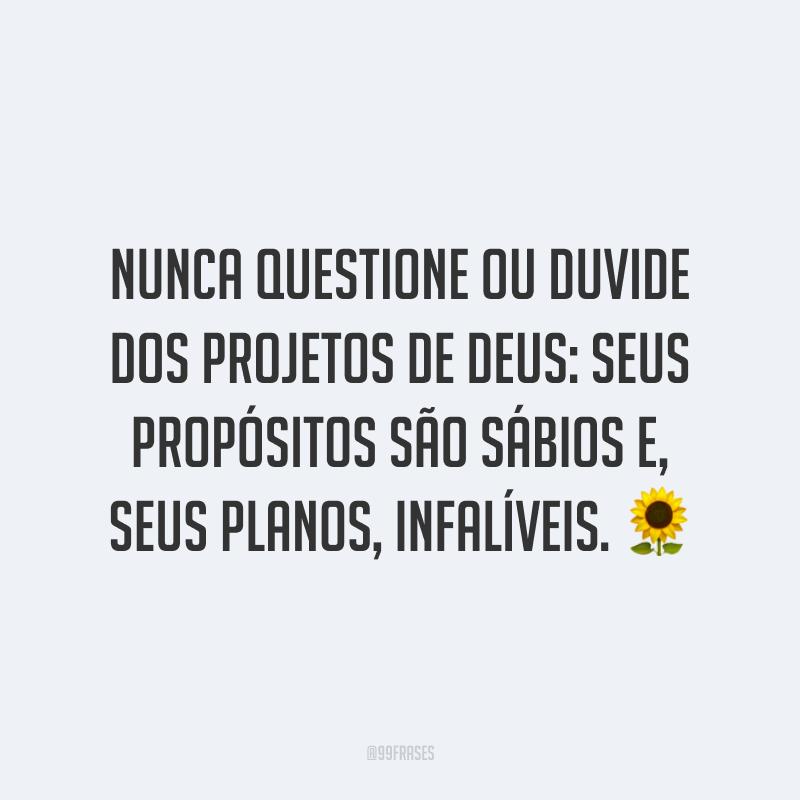 Nunca questione ou duvide dos projetos de Deus: seus propósitos são sábios e, seus planos, infalíveis. 🌻