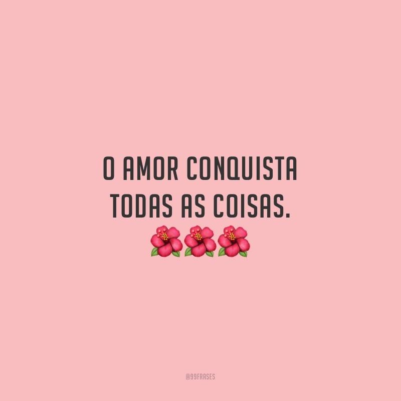 O amor conquista todas as coisas.