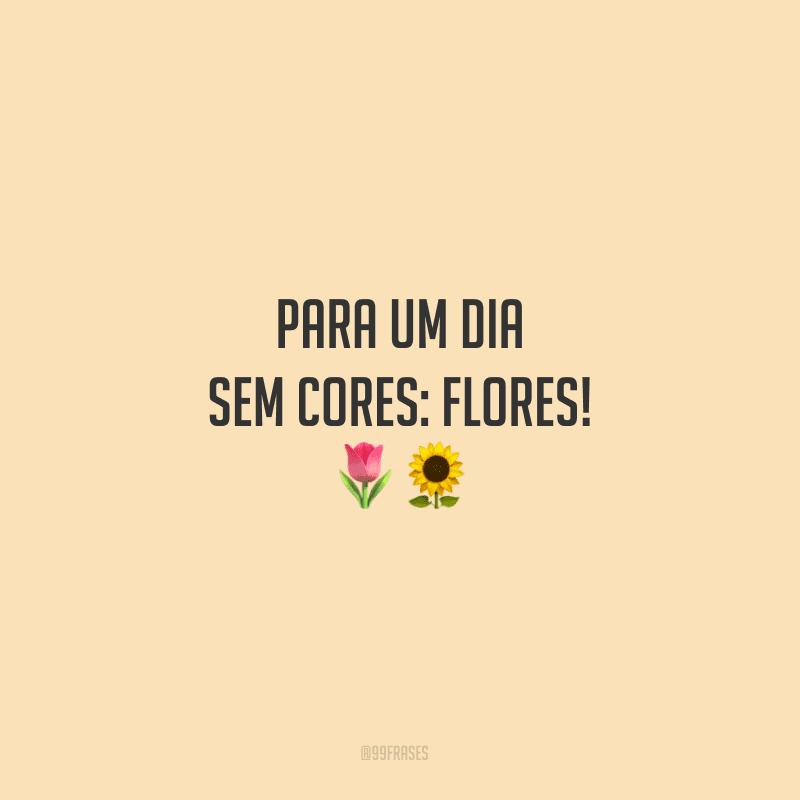 Para um dia sem cores: flores!