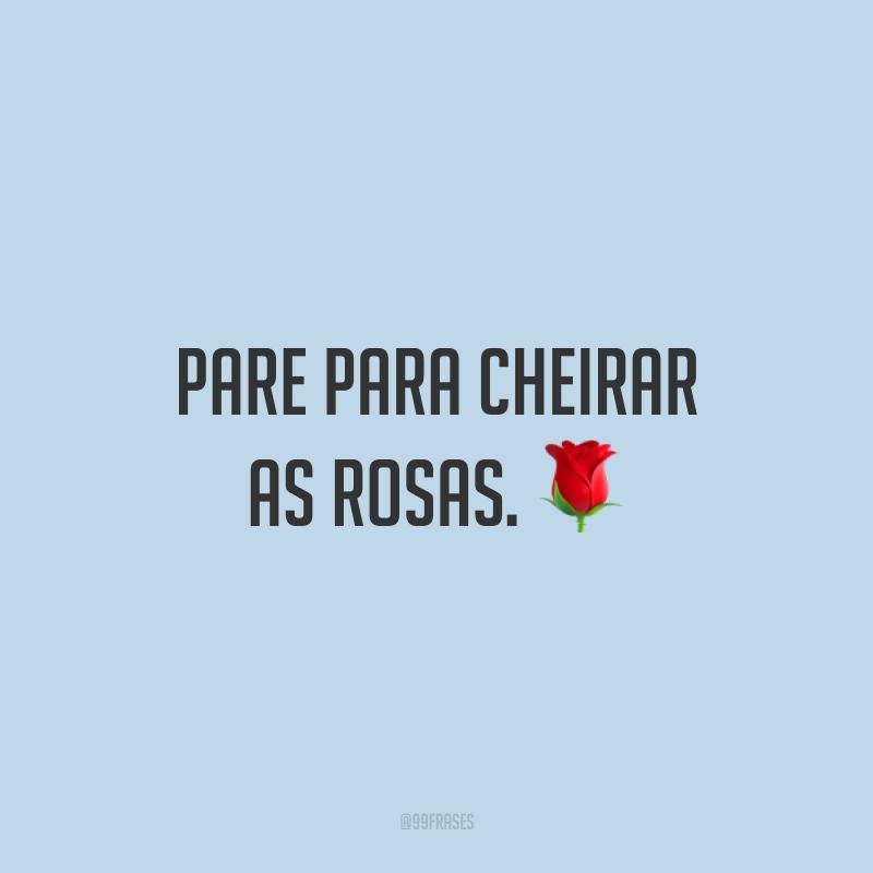 Pare para cheirar as rosas. 🌹