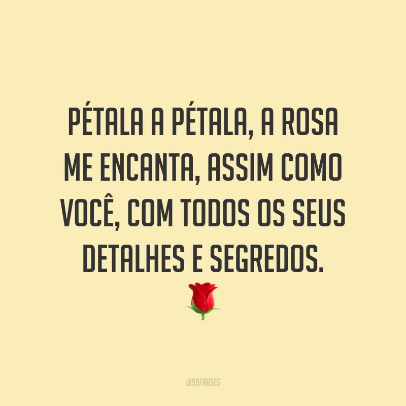 Pétala a pétala, a rosa me encanta, assim como você, com todos os seus detalhes e segredos. 🌹