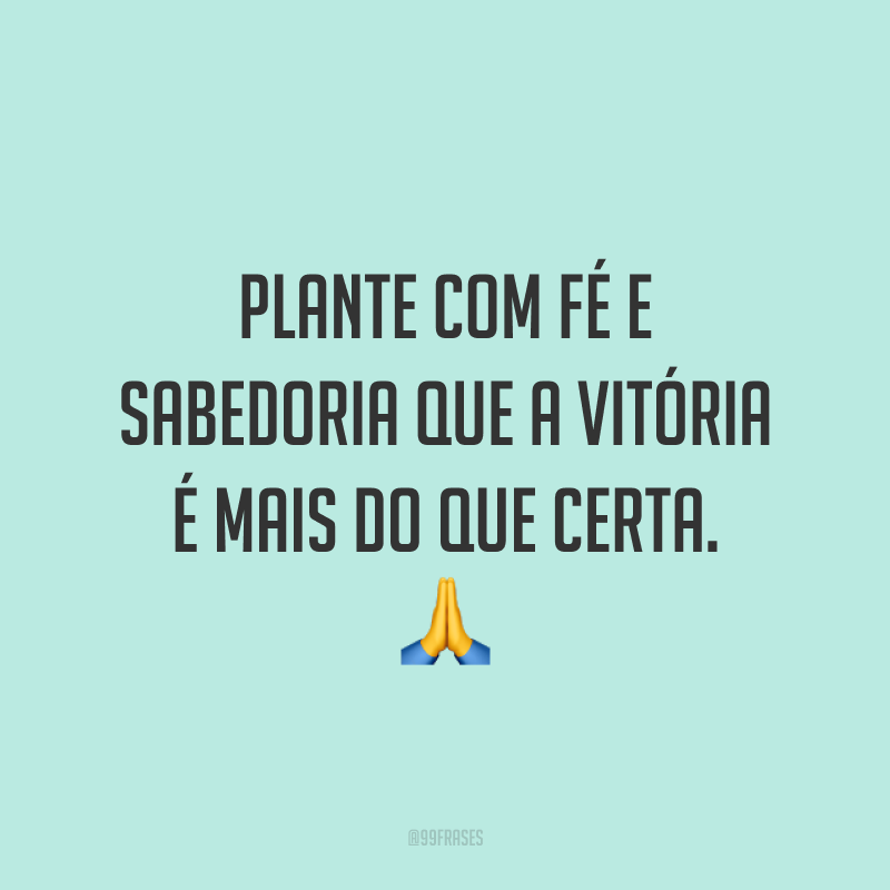 Plante com fé e sabedoria que a vitória é mais do que certa. 🙏