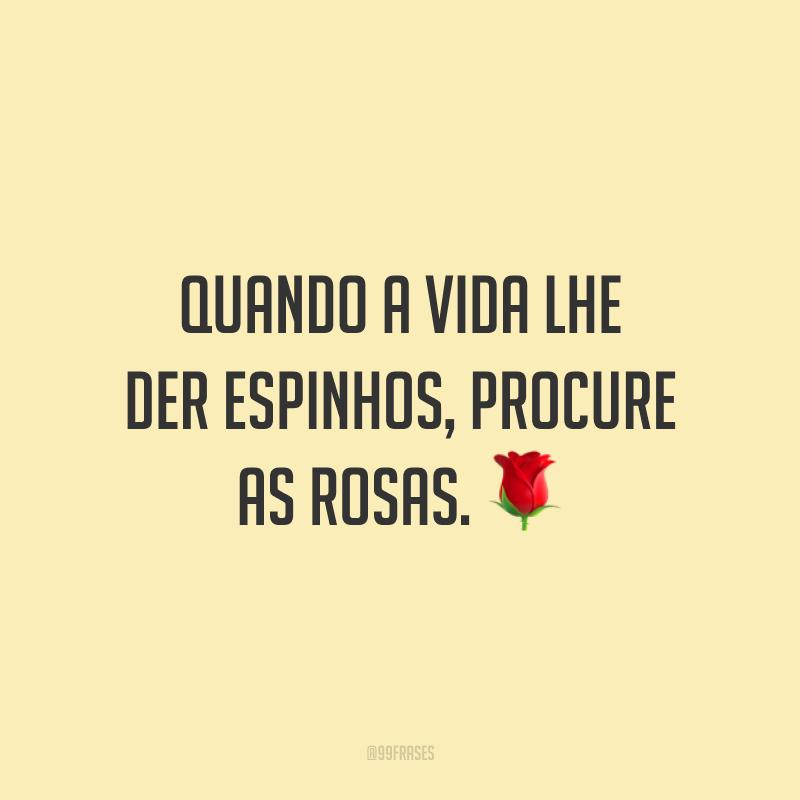 Quando a vida lhe der espinhos, procure as rosas. 🌹