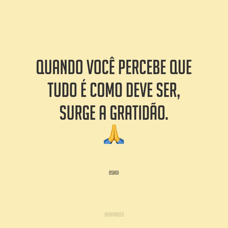 Quando você percebe que tudo é como deve ser, surge a gratidão.<br />