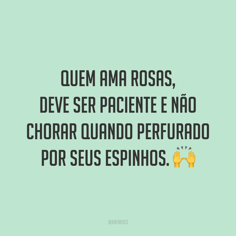 Quem ama rosas, deve ser paciente e não chorar quando perfurado por seus espinhos. 🙌