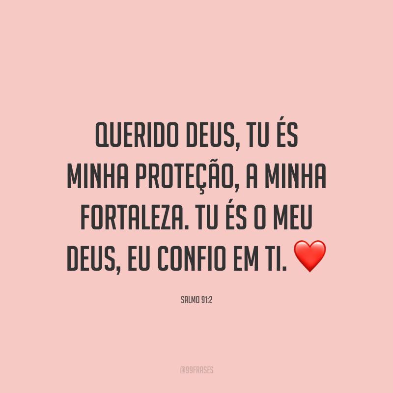 Querido Deus, Tu és minha proteção, a minha fortaleza. Tu és o meu Deus, eu confio em Ti. ❤