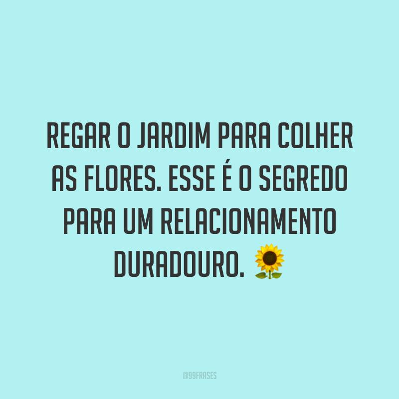 Regar o jardim para colher as flores. Esse é o segredo para um relacionamento duradouro. 🌻