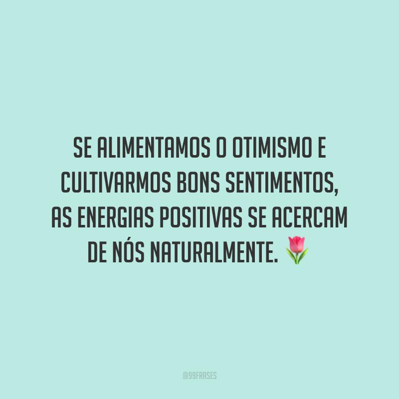 Se alimentamos o otimismo e cultivarmos bons sentimentos, as energias positivas se acercam de nós naturalmente.