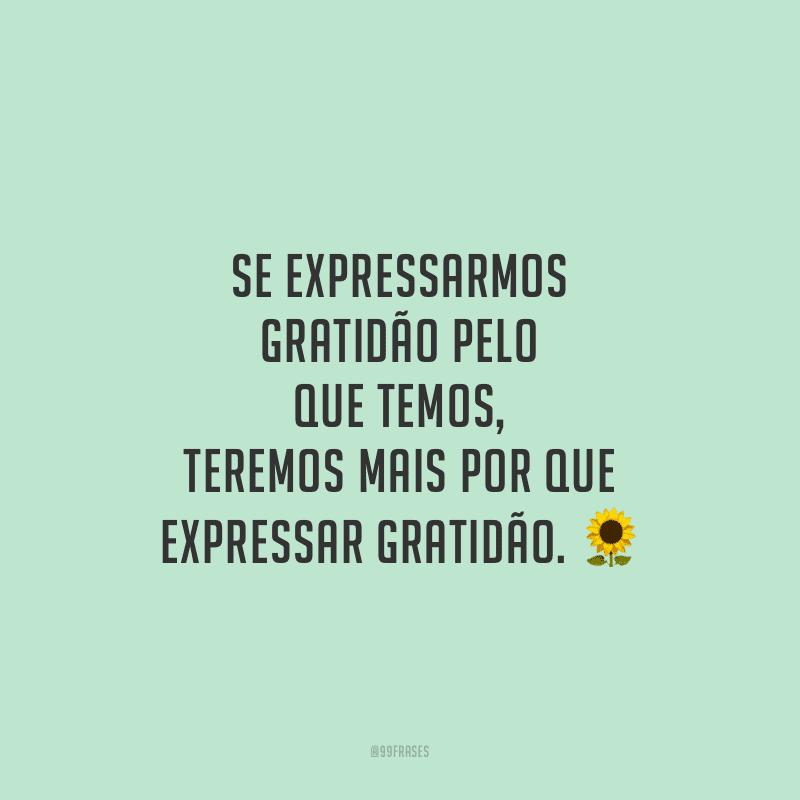 Se expressarmos gratidão pelo que temos, teremos mais por que expressar gratidão.